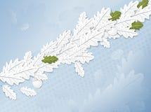 Folhas do carvalho ilustração do vetor