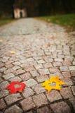 Folhas do coração no cobblestone imagem de stock royalty free