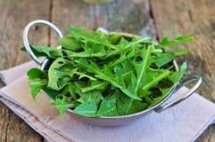 Folhas do dente-de-leão e ovos de codorniz para saladas do vegetariano Foco seletivo Imagens de Stock