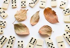 Folhas do dominó e da queda foto de stock