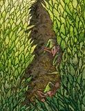 Folhas do duende Imagens de Stock