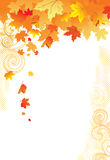 Folhas do fundo/ouro do outono ilustração do vetor