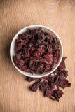 Folhas do hibiscus fotografia de stock royalty free