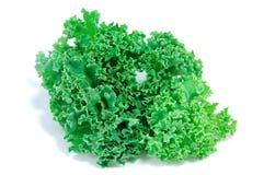 Folhas do Kale Foto de Stock Royalty Free