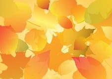 Folhas do outono ilustração stock
