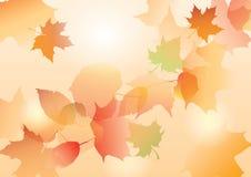 Folhas do outono ilustração royalty free