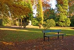 Folhas do outono Imagem de Stock