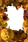 Folhas do outono e frame da abóbora Foto de Stock Royalty Free