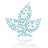 Folhas do sumário do triângulo Imagem de Stock