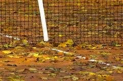 Folhas do tênis Fotografia de Stock