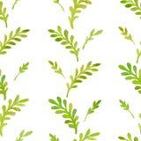 Folhas do teste padrão da aquarela Foto de Stock