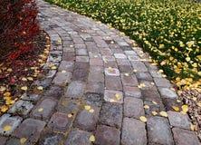 Folhas do trajeto e da queda do tijolo no parque Imagem de Stock Royalty Free