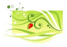 Folhas do verde ilustração stock