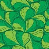 Folhas 01 do verde Foto de Stock