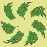 Folhas do verde das árvores ilustração stock