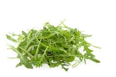 Folhas do verde do rucalo Fotografia de Stock
