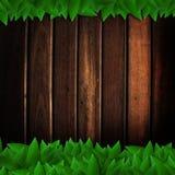 Folhas do verde isoladas na textura de madeira Foto de Stock