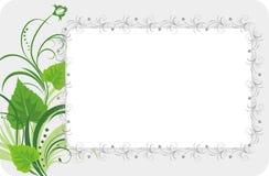 Folhas do vidoeiro com ornamento floral. Fundo Fotos de Stock Royalty Free