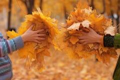 Folhas douradas nas mãos Fotografia de Stock