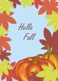 Folhas e abóboras de outono Fotografia de Stock