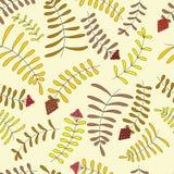 Folhas e bagas Fotografia de Stock