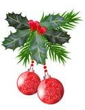 Folhas e bagas do azevinho do Natal e do ano novo Imagens de Stock