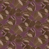 Folhas e camuflar do teste padrão Fotos de Stock Royalty Free