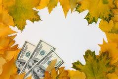 Folhas e dinheiro da queda Fotos de Stock Royalty Free