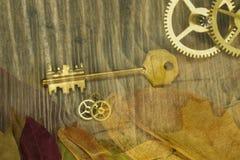 Folhas e engrenagens da chave dourada em uma tabela de madeira velha foto de stock