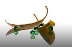 Folhas e esferas Imagem de Stock