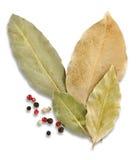 Folhas e especiarias do louro Fotos de Stock