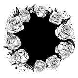 Folhas e flores das rosas ilustração stock