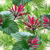 Folhas e flores tropicais da palmeira Teste padrão sem emenda Fotos de Stock Royalty Free