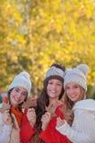 Folhas e forma de outono Imagem de Stock Royalty Free