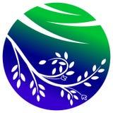 Folhas e glob Imagem de Stock