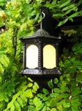 Folhas e lanterna Fotos de Stock