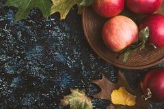 Folhas e maçãs de outono na placa azul Fotos de Stock