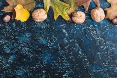 Folhas e nozes de outono na placa azul Imagem de Stock Royalty Free