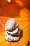 Folhas e pedras de outono Fotos de Stock