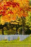 folhas e túmulos em mudança no cemitério nacional de Arlington próximo ao Washington DC, no outono imagem de stock royalty free
