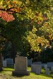 folhas e túmulos em mudança no cemitério nacional de Arlington próximo ao Washington DC, no outono imagem de stock