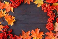 Folhas e texto brilhantes de outono; o fundo genérico da queda, aperfeiçoa para bandeiras da venda, convite do casamento ou salva imagens de stock royalty free