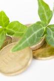 Folhas em moedas de ouro Fotografia de Stock