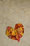 Folhas em um coração no concreto, fundo Fotos de Stock