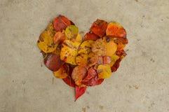 Folhas em um coração no concreto, fundo Foto de Stock Royalty Free