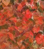 Folhas em uma lona ilustração stock