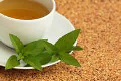 Folhas ervais do chá e de hortelã Imagens de Stock Royalty Free
