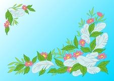Folhas, flores e penas Fotos de Stock