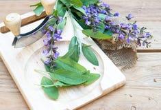 Folhas frescas do sábio na placa de corte de madeira Imagem de Stock Royalty Free