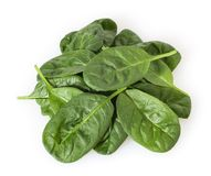 Folhas frescas dos espinafres isoladas no branco fotos de stock royalty free